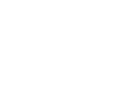 Top League Brand Design